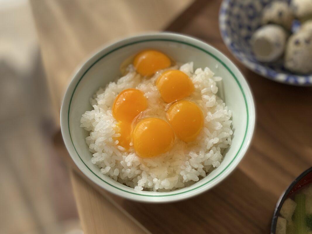 うずらの卵の卵かけご飯